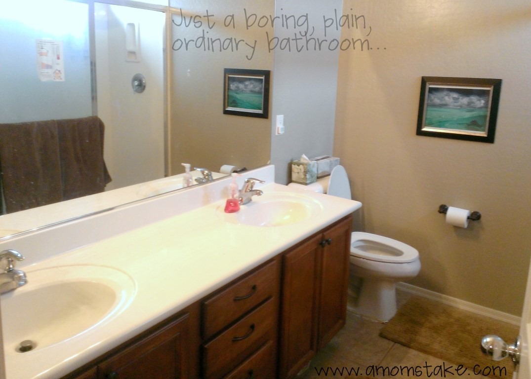 Delta Faucet Bathroom Makeover Before