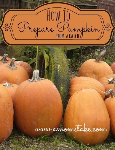 """pumpkin pie filling from scratch"", pumpkin puree, canned pumpkin from scratch"