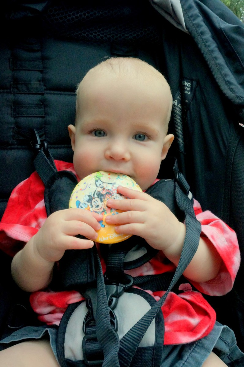 Simple Stroller Rentals Review