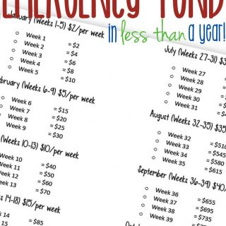 Build a $1000 Emergency Fund in (less than) a year!