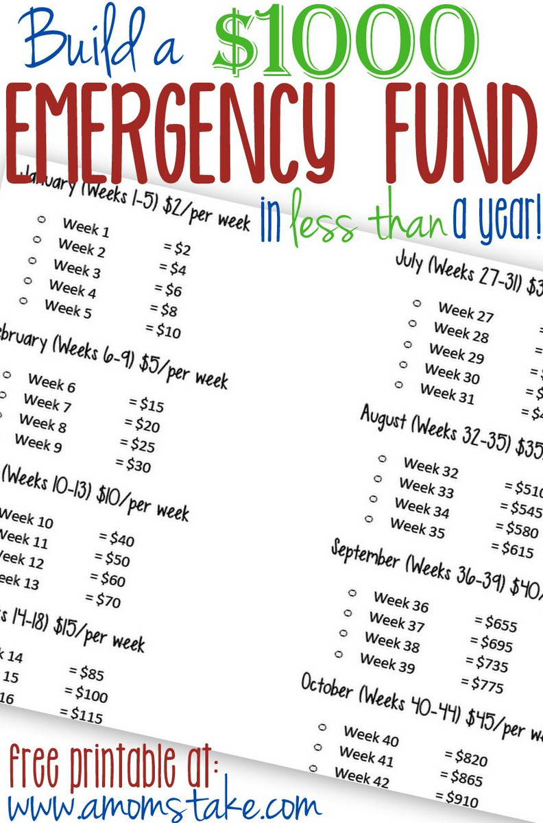 Build A 1000 Emergency Fund In Less Than A Year A