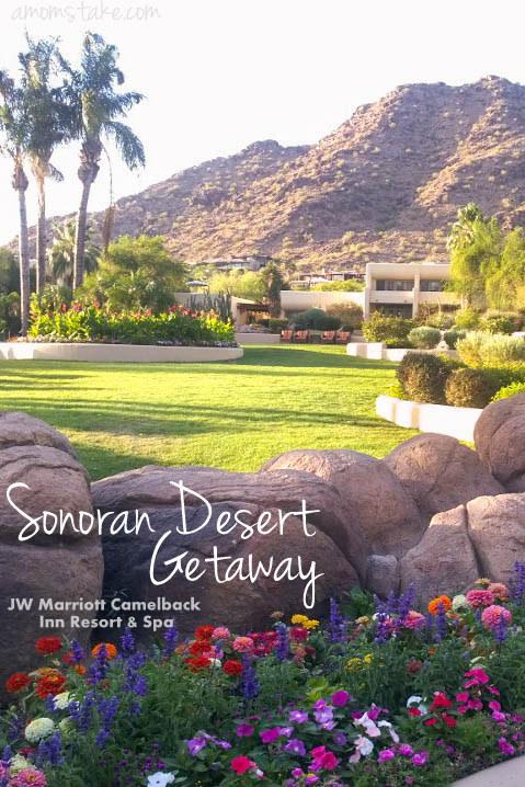 Sonoran Desert Getaway