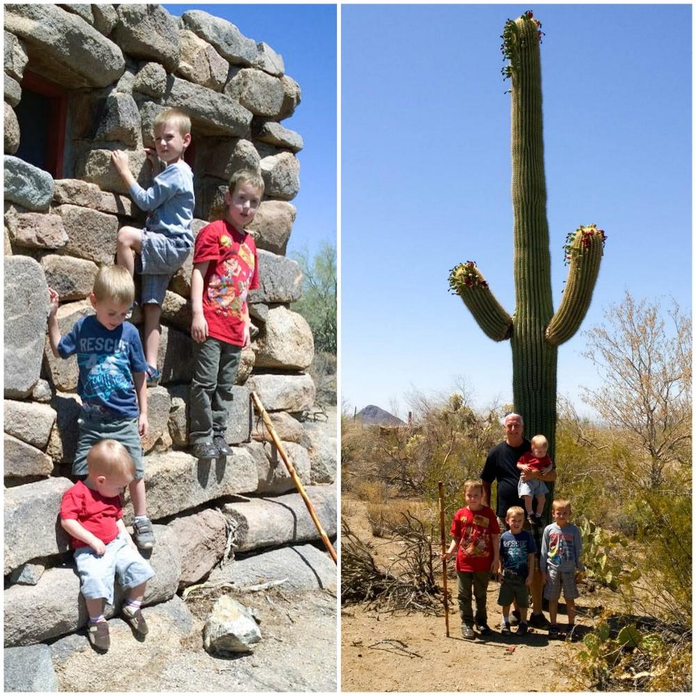 Tucson Staycation