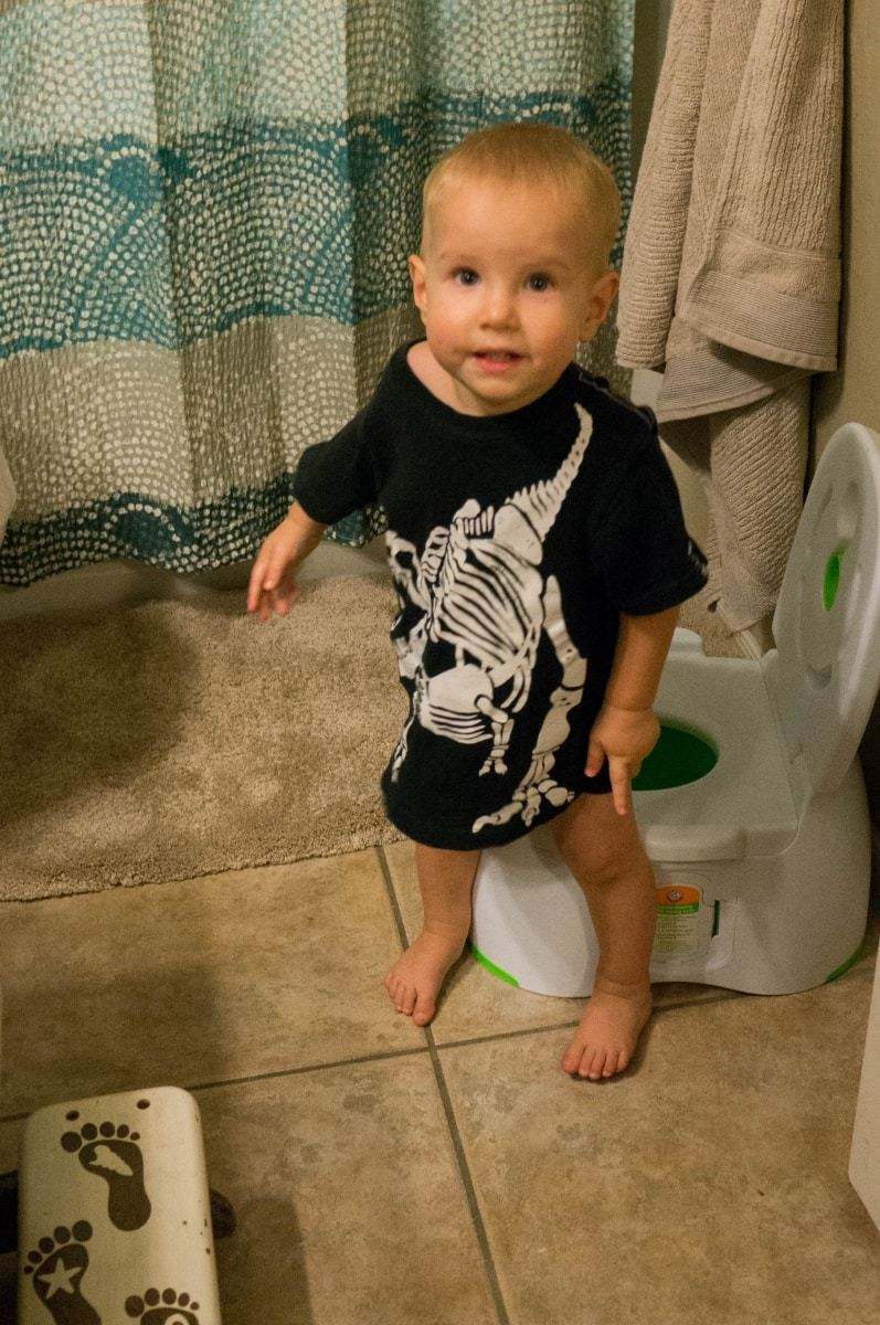 Beginners Guide to Potty Training