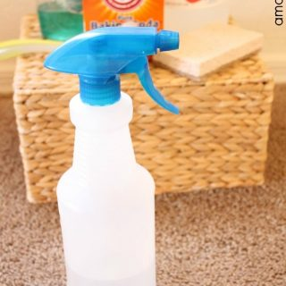 DIY Carpet Stain Remover