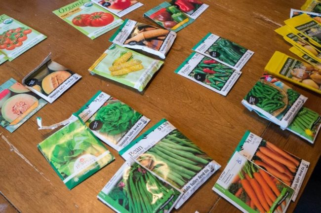 Garden Seed Packet Match 01086
