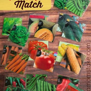 Garden Seed Packet Match Game