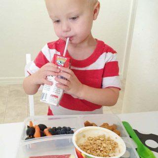Tasty and Organic Lunchbox Ideas