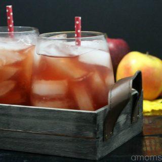Cranberry Apple Cider Drink Recipe
