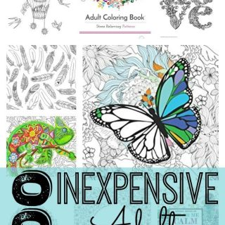100 Inexpensive Coloring Books for Adults