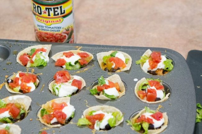 Easy Taco Bites Recipe