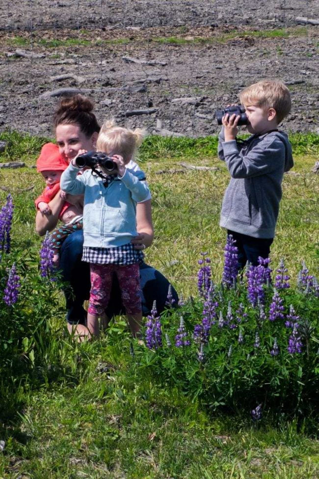 Alaska A Mom's Take 2-2
