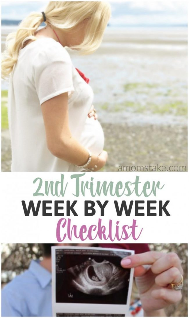 A week-by-week look and to-do list to get you through your 1st trimester of pregnancy! A pregnant mom-to-be's best friend for tackling all the major tasks during pregnancy.