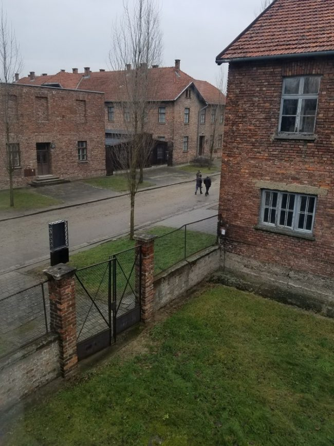 auschwitz death block