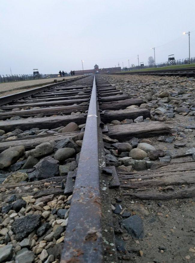 auschwitz ii birkenau rails