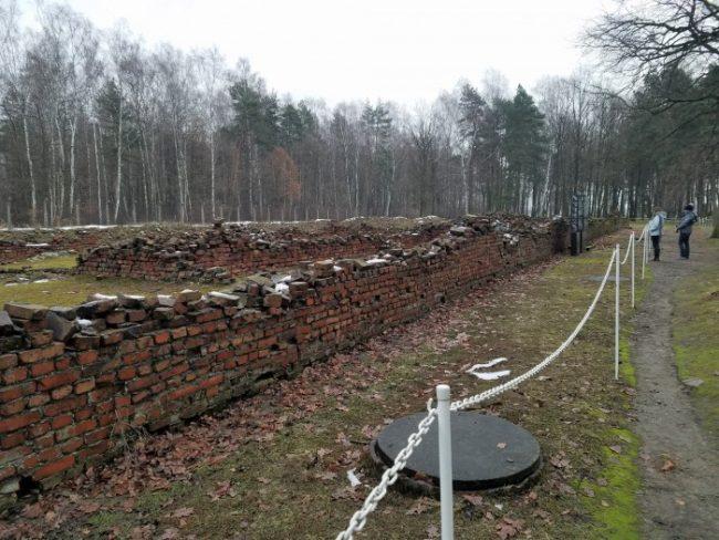 auschwitz ii gas chambers