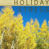 Find out ways to help lower and manage holiday stress
